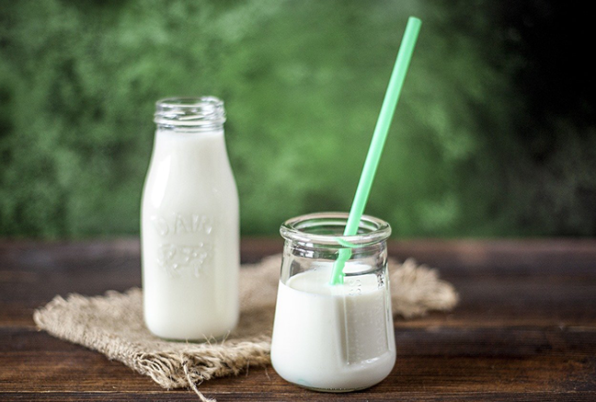 Milk for Toddlers – Learn The Facts
